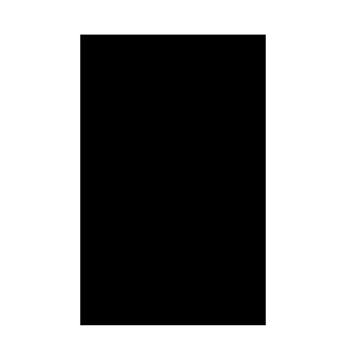 Icon Sänger